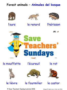 Forest Animals in French Worksheets, Games, Activities and