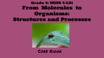 From Molecules to Organisms:Structure and Processes/ NGSS