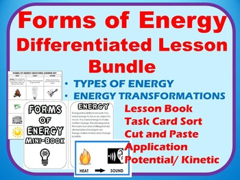 Forms of Energy Bundle: Examples,  Cut & Paste, Applicatio