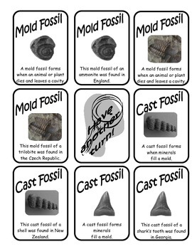 Fossil Hunters Card Game