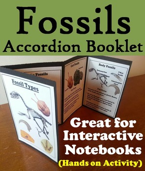 Types of Fossils Interactive Notebook (Geology Unit)