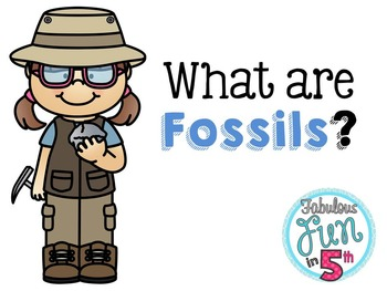 Fossils: PowerPoint, Notes, and Foldable