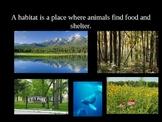 Four Kinds of Habitats