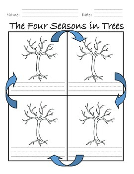 Four Seasons in Trees
