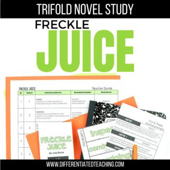 Freckle Juice Foldable Novel Study Unit