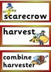 Free Printable Fall / Autumn Vocabulary Cards