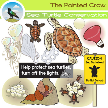 Free Sea Turtle Conservation Clip Art Set - Hawksbills and