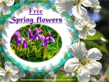 Free Flowers - Interactive slide show