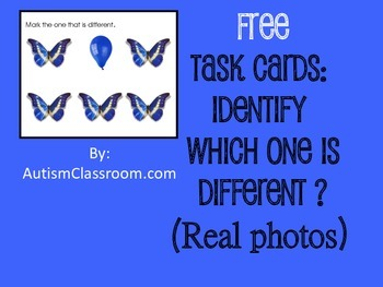 Free Task Cards- Real Photos Which is Different? (By: Auti