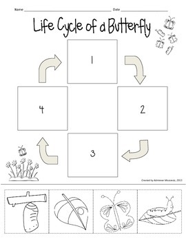 {Freebie!} Butterfly Life Cycle (cut & paste)