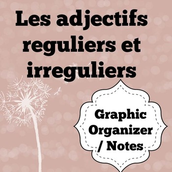 French Adjectives Graphic Organizer / Notes