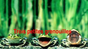 French: Texte narratif, les 3 petites grenouilles:Lecture,