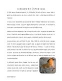 French Prehistoric Art Reading Activity - La grotte de Lascaux