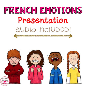 French Vocabulary PowerPoint Presentation – Emotions / Les