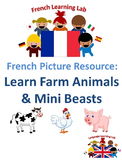 French Vocabulary - Farm Animals & Mini Beasts - Picture Resource