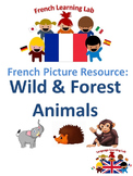 French Vocabulary Picture Resource - Wild Animals & Forest
