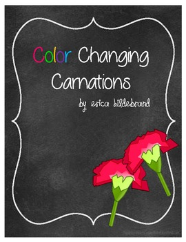 {Friday Fun Series} Color Changing Carnations
