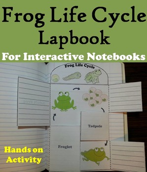 The Life Cycle of a Frog Activity/ Foldable: Eggs, Tadpole