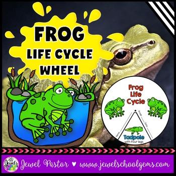 Animal Life Cycle Activities (Frog Life Cycle Craft)