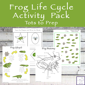Frog Life Cycle Activity Pack