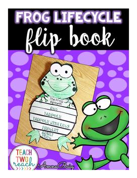 Frog Life Cycle Flip Book Craftivity
