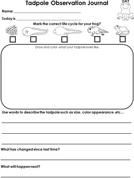 Frog Life Cycle Tadpole Journal, Worksheets, and Writing Prompts