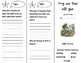 Frog and Toad All Year Trifold - Storytown 2nd Grade Unit
