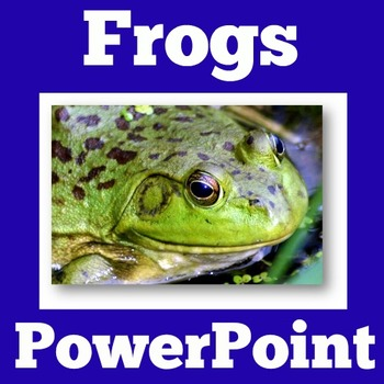 Frog Life Cycle   Frogs Activities   Frogs Science   Frogs