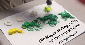 Frog's Life Cycle Clay Models and Creative Writing  MS-LS4-3