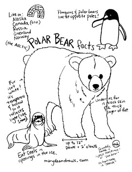 Fun Facts about Polar Bears Free Hand-drawn Printable Colo