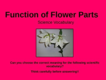 Function of a Flower Quiz and Assessment PowerPoint