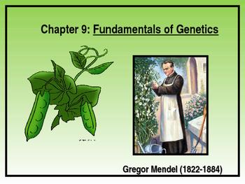 Fundamentals of Genetics (Gregor Mendel)
