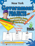 New York Government Projects