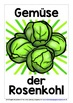 GERMAN VEGETABLES - CLASSROOM DECOR - 25 DISPLAY POSTERS /