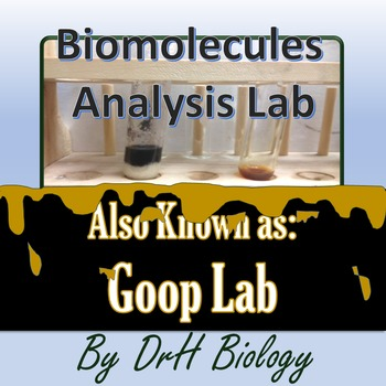 Lab: Biomolecules Analysis