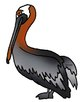 Galapagos Animals Clip Art Unit 2