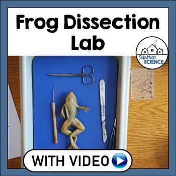 Basic Biology: Frog Dissection Laboratory