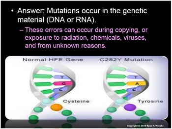 Genetic Disorders and Bioethics, Stem Cells, Cloning, GMO'
