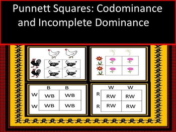 Genetic Punnett Square Practice Dominance and Incomplete D