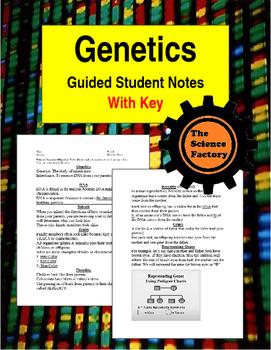 Genetics Notes Word Document