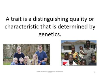 Genetics PowerPoint. Intro to Genetics & Word Definitions