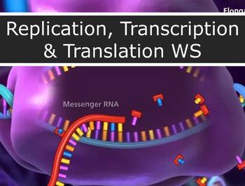 Genetics - Replication, Transcription & Translation WS