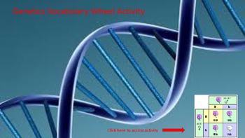 Genetics Vocabulary Wheel