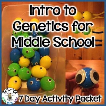 Genetics for Middle School with Easter Eggs and Pipe Clean