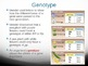 Genetics/Heredity Power Point
