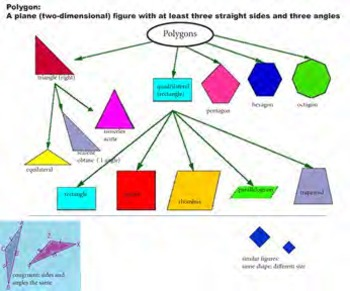 Geometry Jeopardy Board Game 2 Dimensional Figures Cheat S