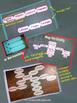 Geometry Proofs /Proof Blocks /Proof Tiles/ Proof Strips /