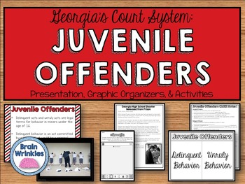 Georgia's Government: Juvenile Offenders (SS8CG6)