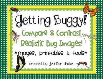 Get Buggy! ~Compare & Contrast Realistic Bug Photos~ Photo
