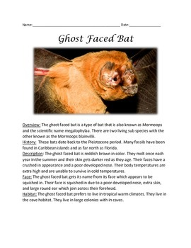 Ghost Faced Bat - Informational Article Facts Questions Vo